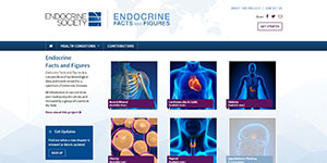 Endocrine Society Facts and Figures home page